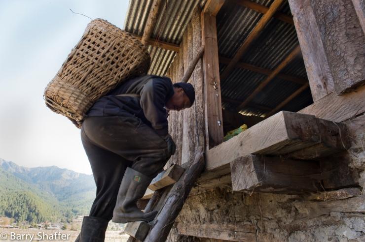 bhutan_posts-42