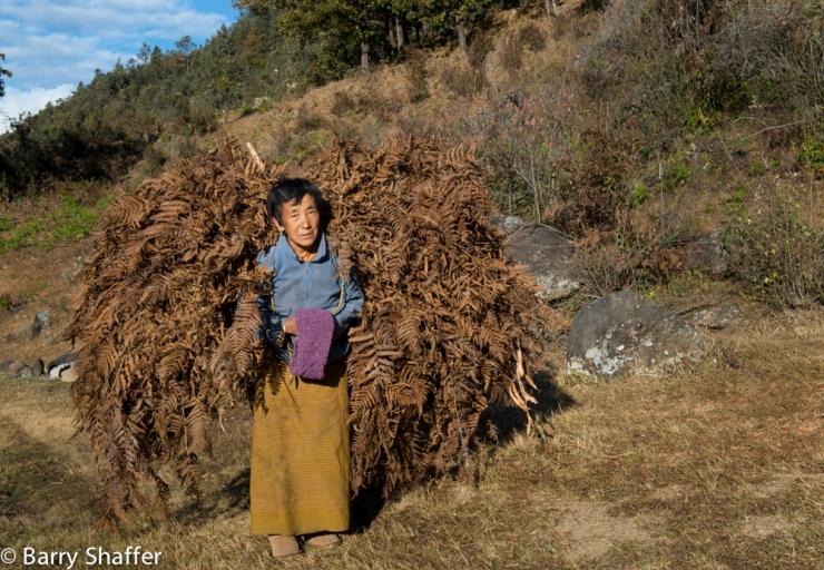 bhutan_posts-63